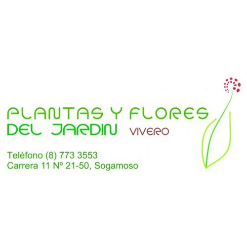 Vivero Plantas y Flores del...